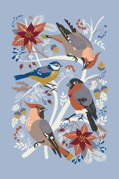 Digital illustration with winter birds and Christmas flora is beautiful for a tea towel.
