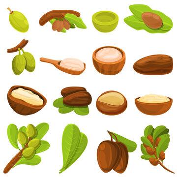 Shea tree icons set. Cartoon set of shea tree vector icons for web design