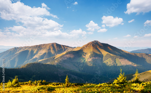 Wall mural Tranquil sunny day in alpine valley. Location place of Carpathian mountains, Ukraine.