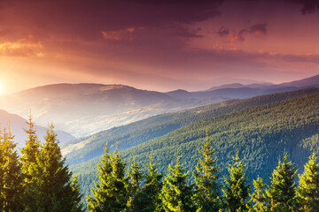 Wall Mural - Beautiful sunset in the summer mountains.