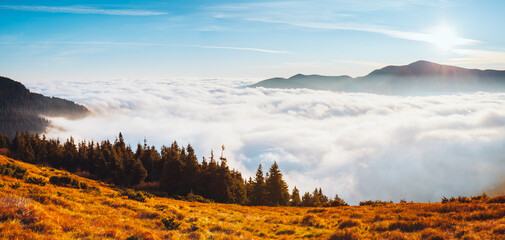 Wall Mural - Attractive view of the mountains covered with thick fog.
