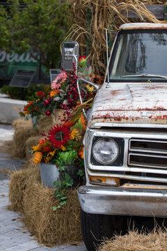 Old truck - fall decor - harvest season