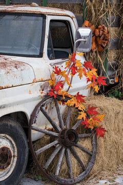 old car in the autumn - fall - harvest season
