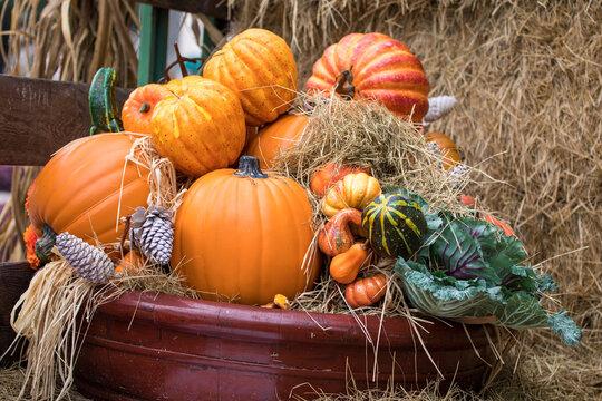 pumpkins in a basket - fall decor - harvest season