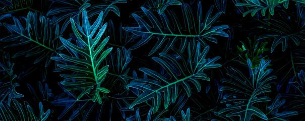 Wall Mural - closeup tropical green leaf background. Flat lay, fresh wallpaper banner concept