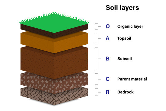 Soil layers for education, Geological study, Diagram showing different layers of soil