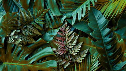 Wall Mural - closeup nature view of green monstera leaf and palms background. Flat lay, dark nature concept, tropical leaf