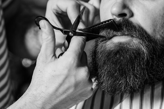 Barber shearing beard to man in barbershop, close up. Beard styling and cut.