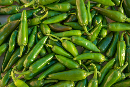 Shot of  green hot chili peppers on the table