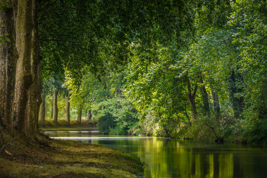 the Canal du Midi near Toulouse, in France