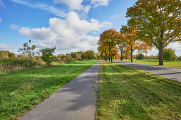 Landscape with an avenue and colorful autumn trees in the surrounding region of Berlin.