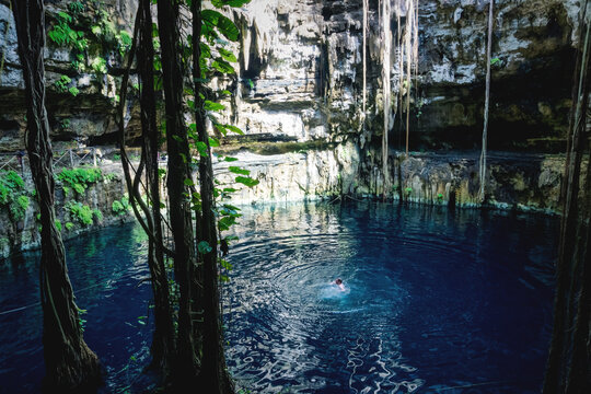 Man swimming in Oxman cenote with blue water and tropical plants in the cave, Yucatan, Mexico