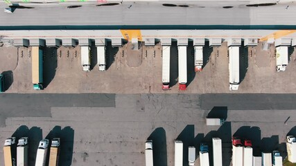 Fototapeta Lorry drives along large concrete ground past numerous trucks at ramps of huge warehouse buildings on sunny day aerial view obraz