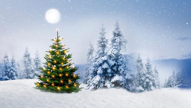 Glänzender Weihnachtsbaum in einem Verschneiten Winterwald