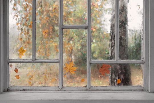 white old wooden window with rain drops and autumn leaves