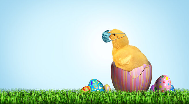 Healthy Easter banner as a seasonal sign with a chick wearing a medical face mask and surgical facial protection for disease protection and decorated eggs