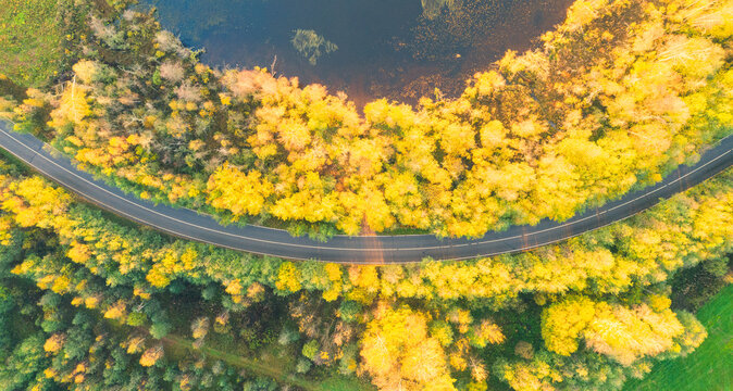 Aerial view of rural car road in yellow and orange autumn forest. Aerial road near the lake. Top view autumn road landscape. Top view of asphalt roadway