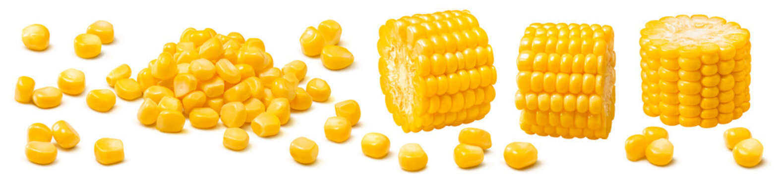 Corn set isolated on white background. Kernels and sliced cobs