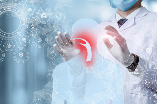 Concept of diagnosis and treatment of diseases of the nasal mucosa.