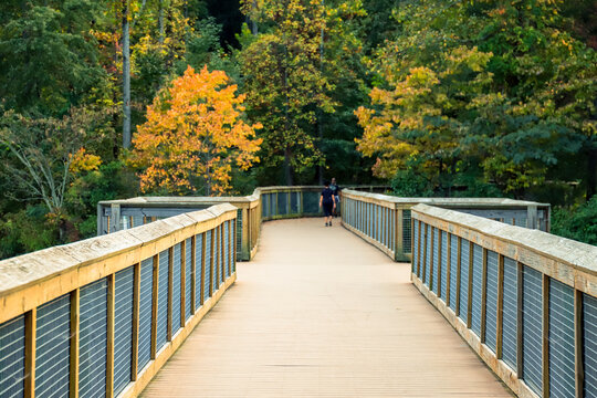 a bridge through the forest with wooden and gated railings with lush green and autumn colored trees at Rhodes Jordan Park At Lawrenceville in Lawrenceville, Georgia