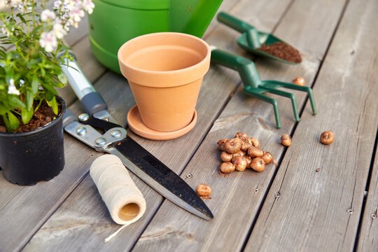 gardening, farming and planting concept - garden tools, pots and flowers on wooden terrace in summer