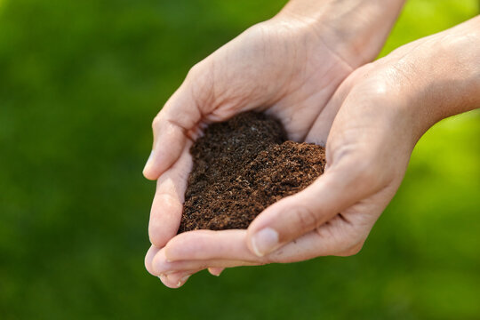 gardening, environment and people concept - cupped hands holding soil in shape of heart at summer garden