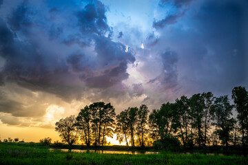 Overcast sky.Thunderclouds.Silhouette of tall trees.Green steppe.horizontal Fotobehang