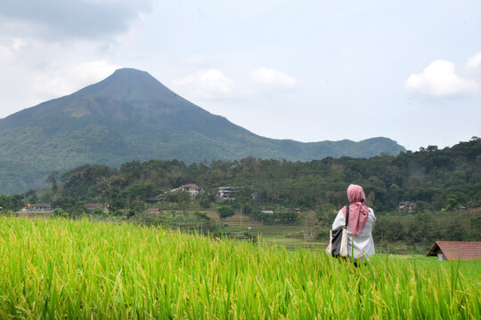 Woman wearing hijab in the middle of green rice field with the background of Mount Arjuno, Trawas, Mojokerto, East Java, Indonesia