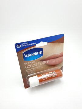 Vaseline lip therapy cocoa butter with petroleum jelly stick