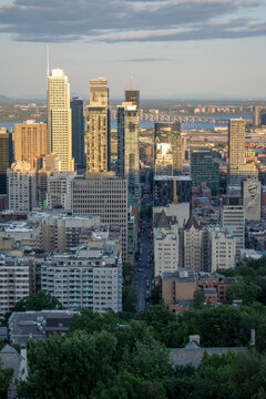 Montreal view from Plateau Mont Royal
