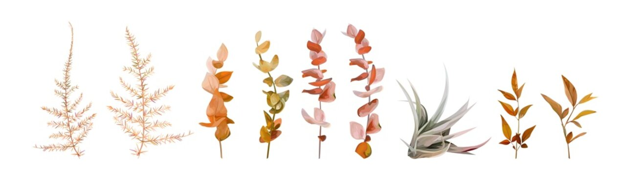 Vector watercolor floral autumn designer element set. Fall colored burnt orange, ocher red eucalyptus branches, natural leaves, beige asparagus fern, taupe green succulent editable & isolated on white