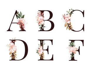 Obraz Watercolor floral alphabet set of A, B, C, D, E, F with red and brown flowers and leaves. Flowers composition for logo, cards, branding, etc. - fototapety do salonu