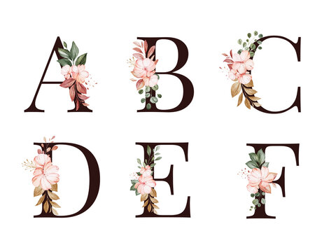 Watercolor floral alphabet set of A, B, C, D, E, F with red and brown flowers and leaves. Flowers composition for logo, cards, branding, etc.