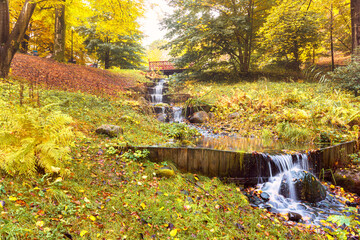 Stream of water creating step waterfalls and surrounded by trees blooming with colorful autumn leaves near gothenburg, sweden
