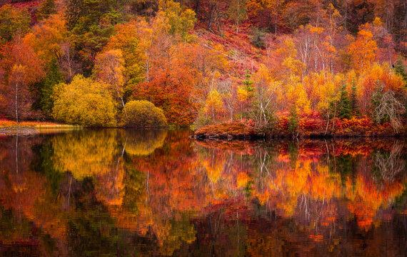 Autumn in Lake District.Reflection of colourful trees in water.Bright and vibrant landscape scene.Nature background, wallpaper.