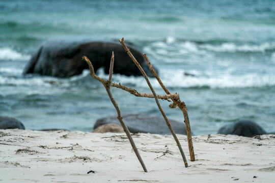 Wooden sticks stuck in the sand on the beach