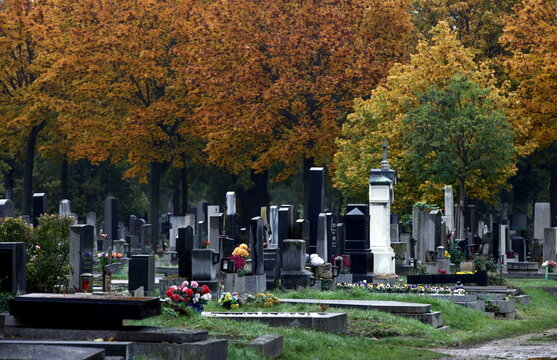 Tombstones are seen at the Zentralfriedhof cemetery on an autumn day ahead of All Saints Day in Vienna