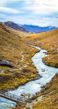 Denali national park Savage river Canyon trail view