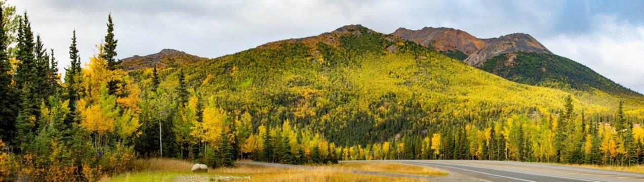 Scenic view of Denali National park road of Alaska
