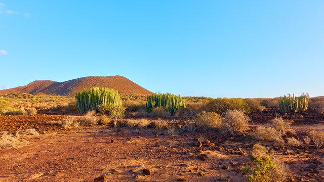 Barren landscape in the south of Tenerife