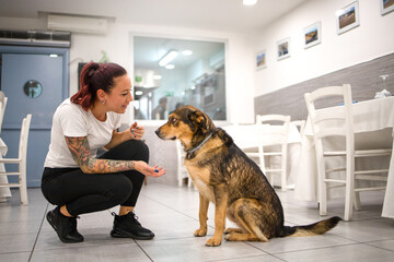 Young owner of the restaurant happily greets the dog. Concept pet friendly and welcoming animals in the restaurant.