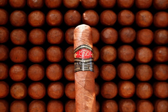 La Flor Dominicana cigars are on display in a tobacco store amid the coronavirus disease (COVID-19) outbreak in Brussels