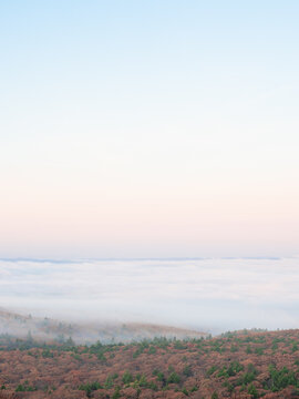 Fog covering the forest below you on an autumn morning on Mount Wachusett in Massachusetts.