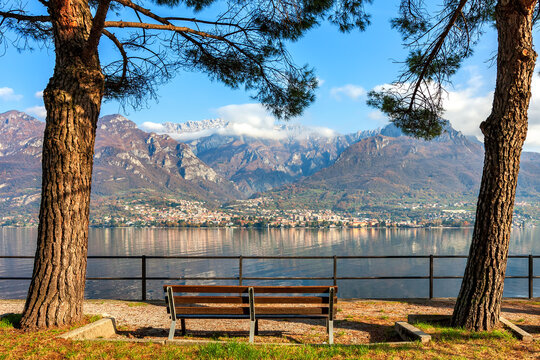 Bench among trees and Lake Como in Italy.
