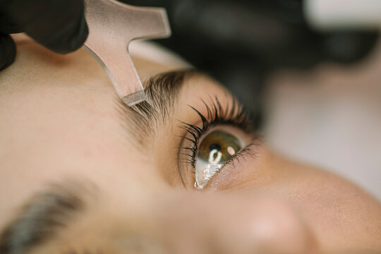 Young Woman Getting Natural Lash and Brows treatment
