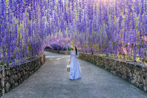 Wall mural Beautiful girl walking at purple flower tunnel in Chiang Rai, Thailand.