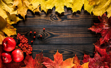 colorful autumn leaves apples and dried mountain ash on a wooden background with space for text. horizontal arrangement