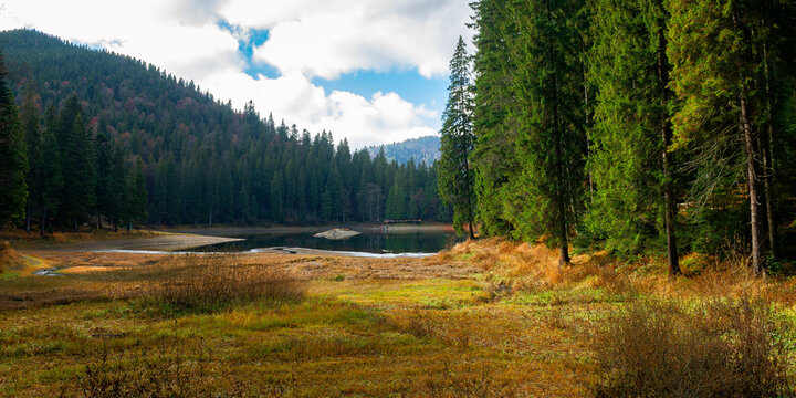mountain lake among the coniferous forest. wonderful nature scenery in autumn. dry sunny weather with clouds on the sky