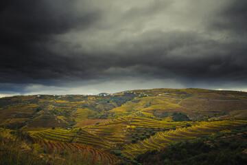 a cor da paisagem no outono