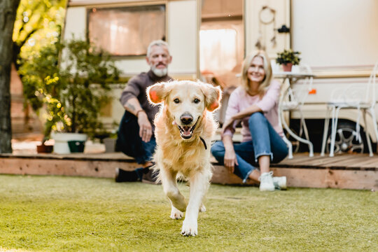 Running dog in the foreground with mature happy couple in the background sitting on the porch with camper van behind